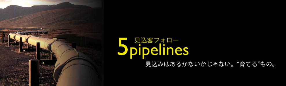 12essentials_top_5pipelines.png